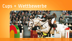 Cups & Wettbewerbe