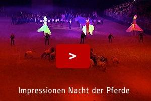 Impressionen Nacht der Pferde