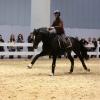 Pferd & Jagd CAMPUS