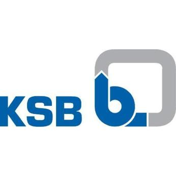 KSB SE & Co. KGaA