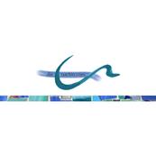 Logo Die Coachin