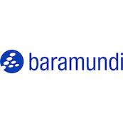Logo baramundi Software AG