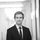 IANUS Simulation GmbH, Dr.-Ing. Tobias Herken