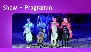 Show + Programm