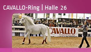 CAVALLO-Ring